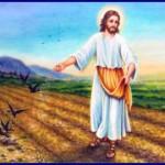 jesus el sembrador