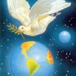 tierra y paz